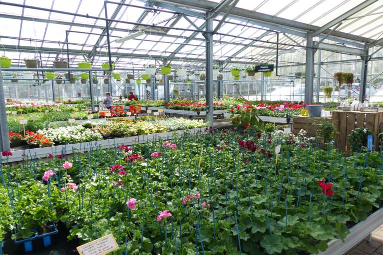 Vive le printemps apei ouest 44 - Horaire vive le jardin bernay ...